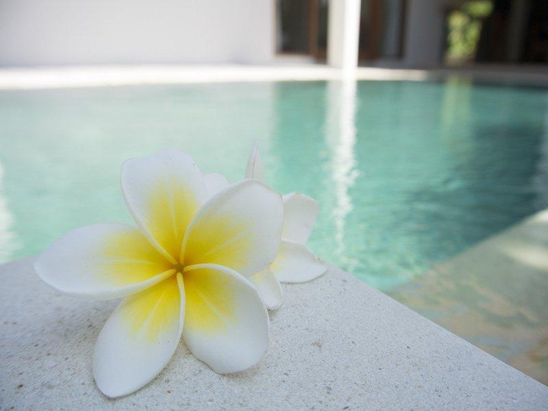 piscinas de obra moderna